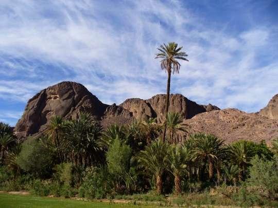 الجزائر 2013 130405220136MwBM.jpg