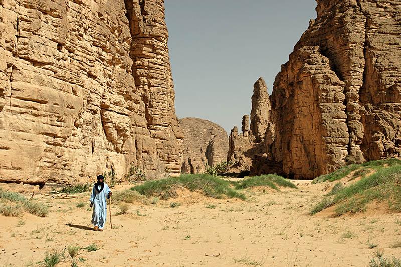 الجزائر 2013 130405220136Q01P.jpg
