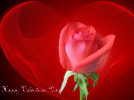 صور قلوب حب ورومانسية 2013 13042420041498Jl.jpg